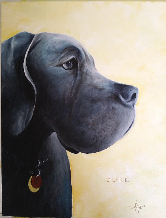 "Duke - 12"" x 12"" Not for Sale"