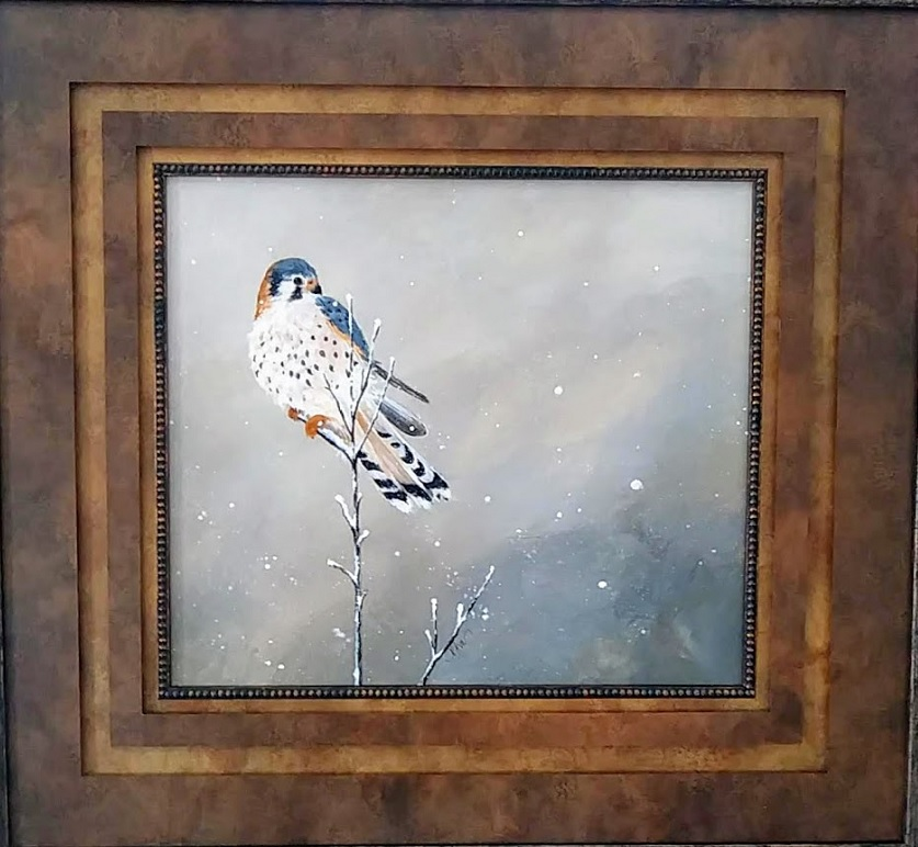 "American Kestrel I 30 by 32"",  framed - $300"