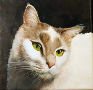 Commissioned Portrait - Cat - Not for Sale