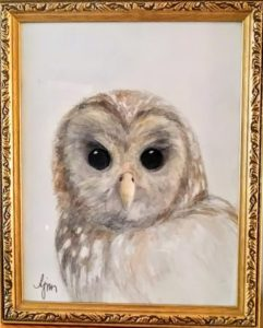"Owl - pencil and color wash, 16x13"" framed.  $140"