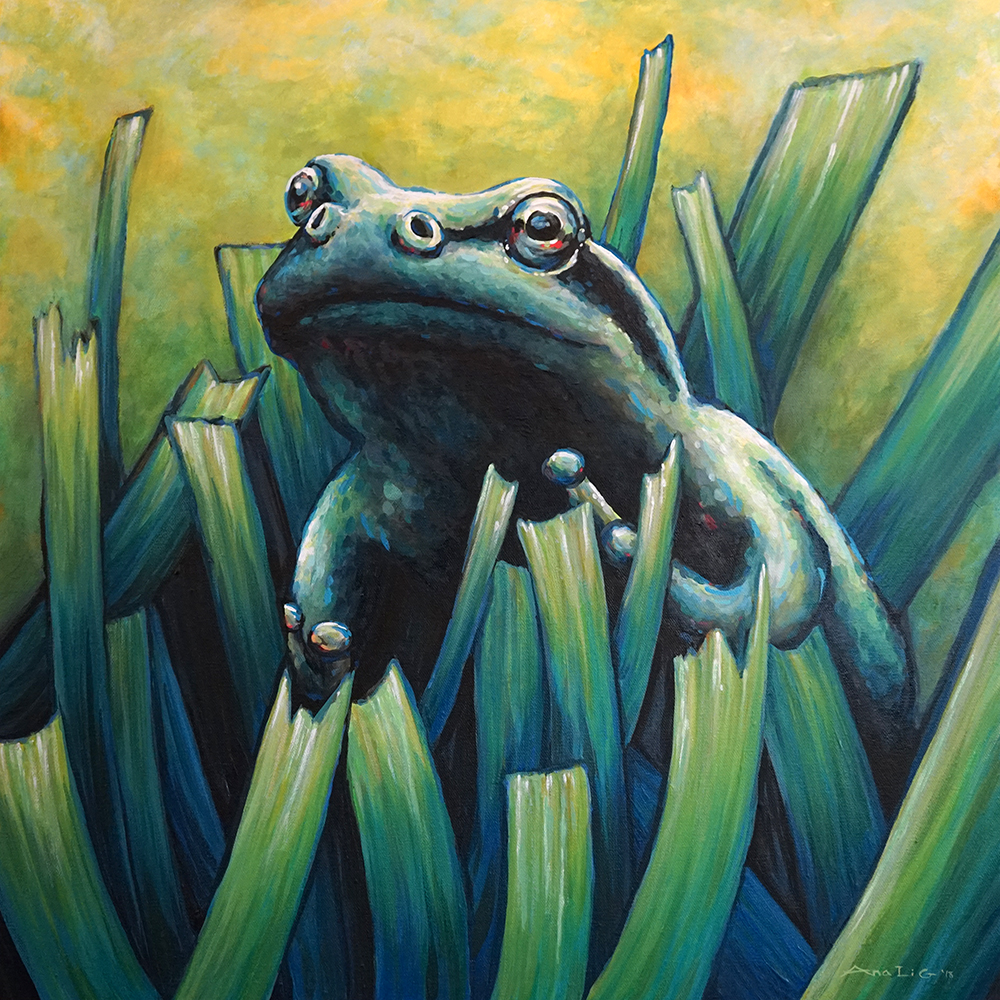 Frog in Grass Original -
