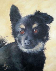My Dog, Mardy Fish ~ Not For Sale ~