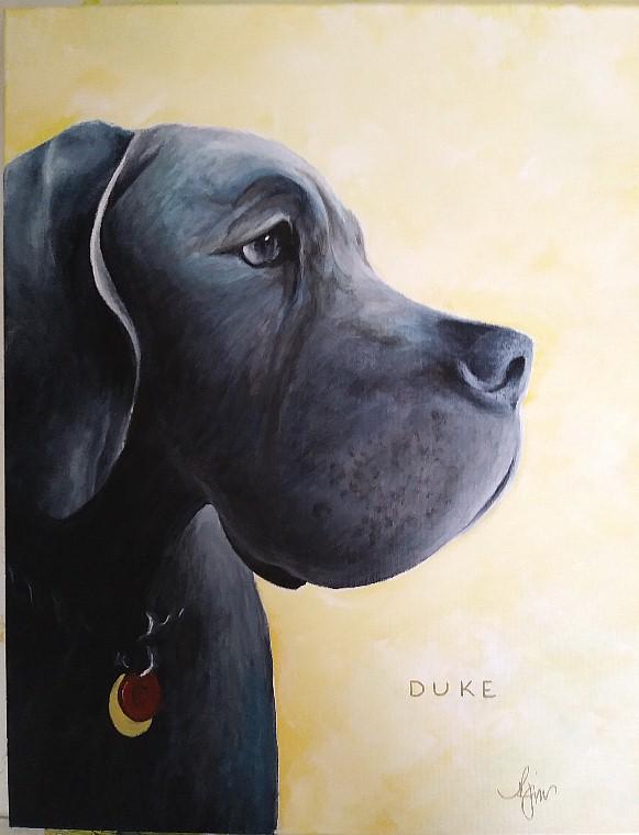 """Duke - 12"""" x 12"""" Not for Sale"""