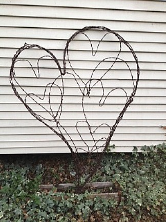 Lovin' Heart Trellis - Barbed wire is just the thing for a climbing vine to hold on to.