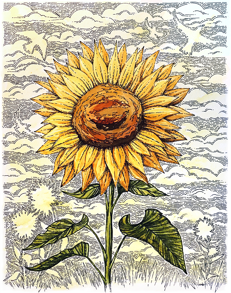 """Sunflower with Lines Watercolor Painting with Archival Pen Original - 11""""x14"""" Price: $125"""