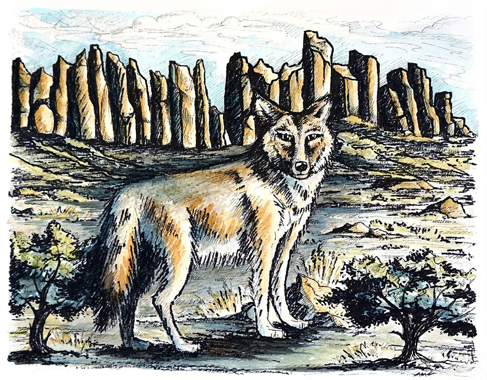 """Coyote Watercolor Painting with Archival Pen Original - 12.25""""x9.75"""" Price: $45"""