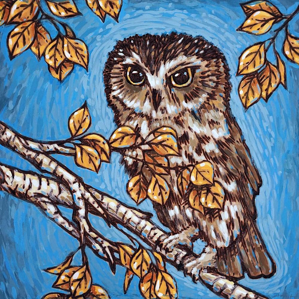 "Tawny Owl Print - 8""x8"" Price: $22"