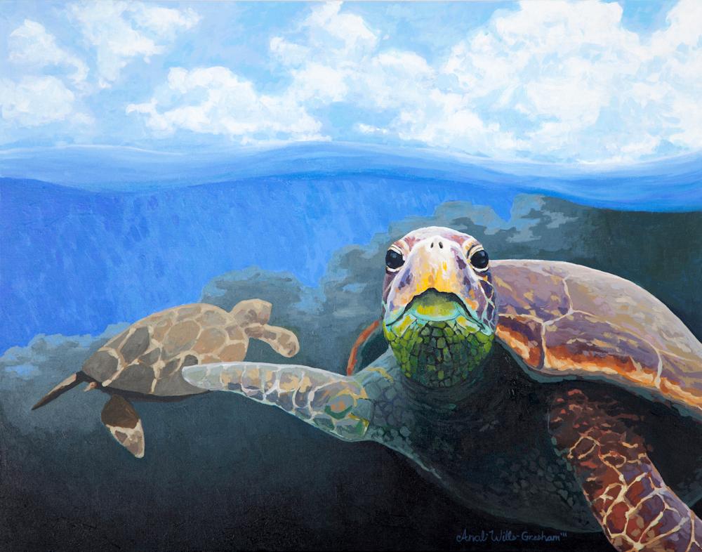 """Sea Turtle Print - 11""""x14"""", 8""""x10"""", 5""""x7"""" Price: $32, $22, $12"""