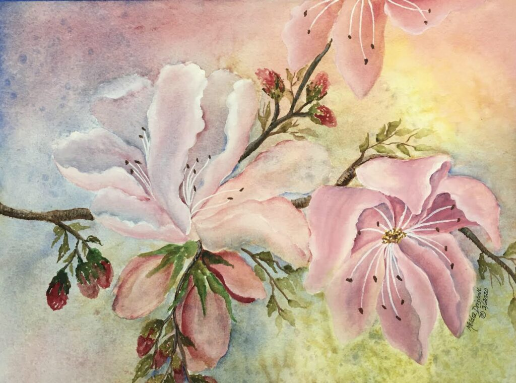 Magnolia Bliss